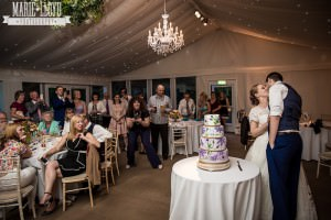 Iscoyd Park Wedding Cake cutting