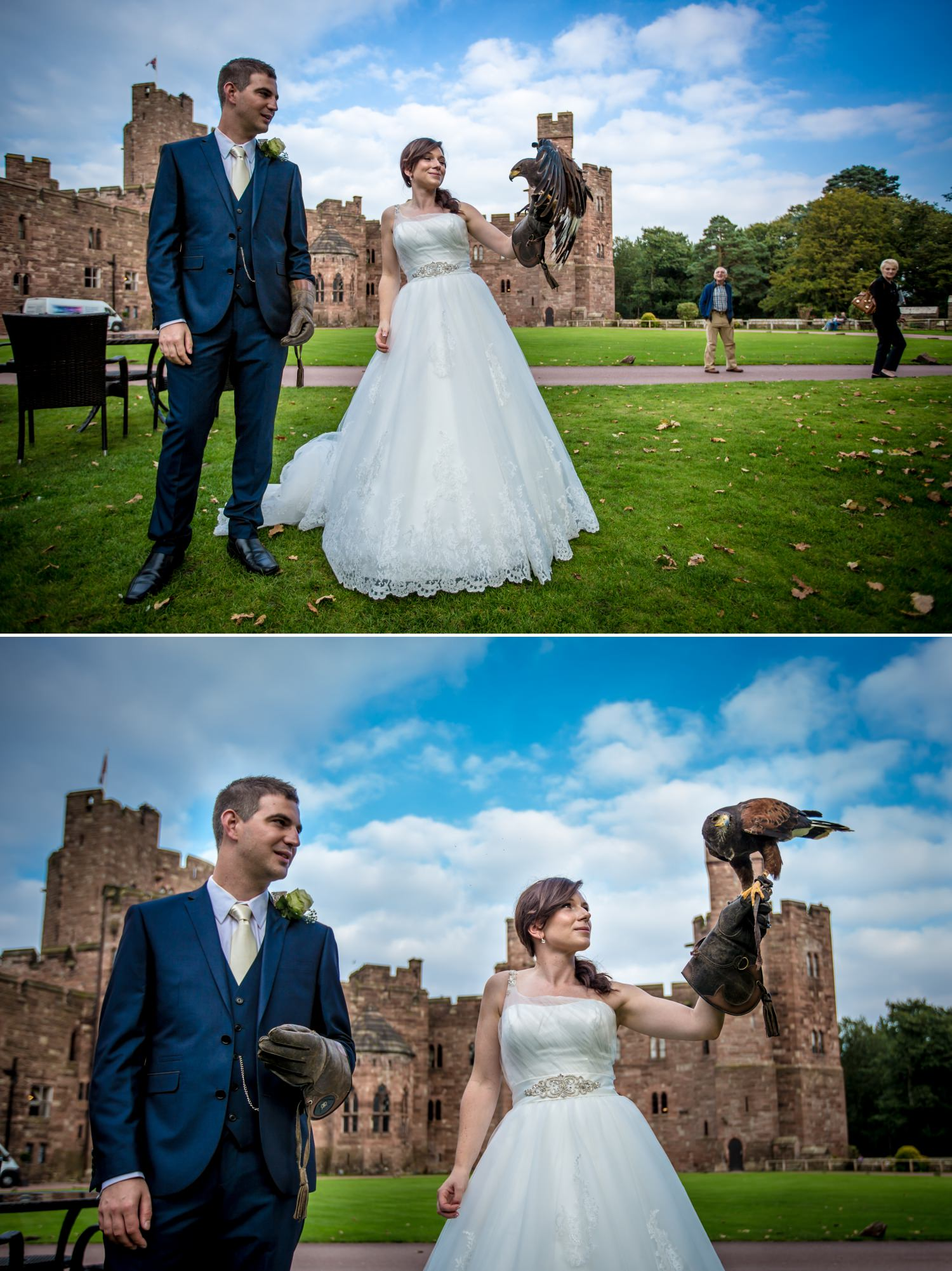 Bird of prey wedding photographs at Peckforton Castle, Chester