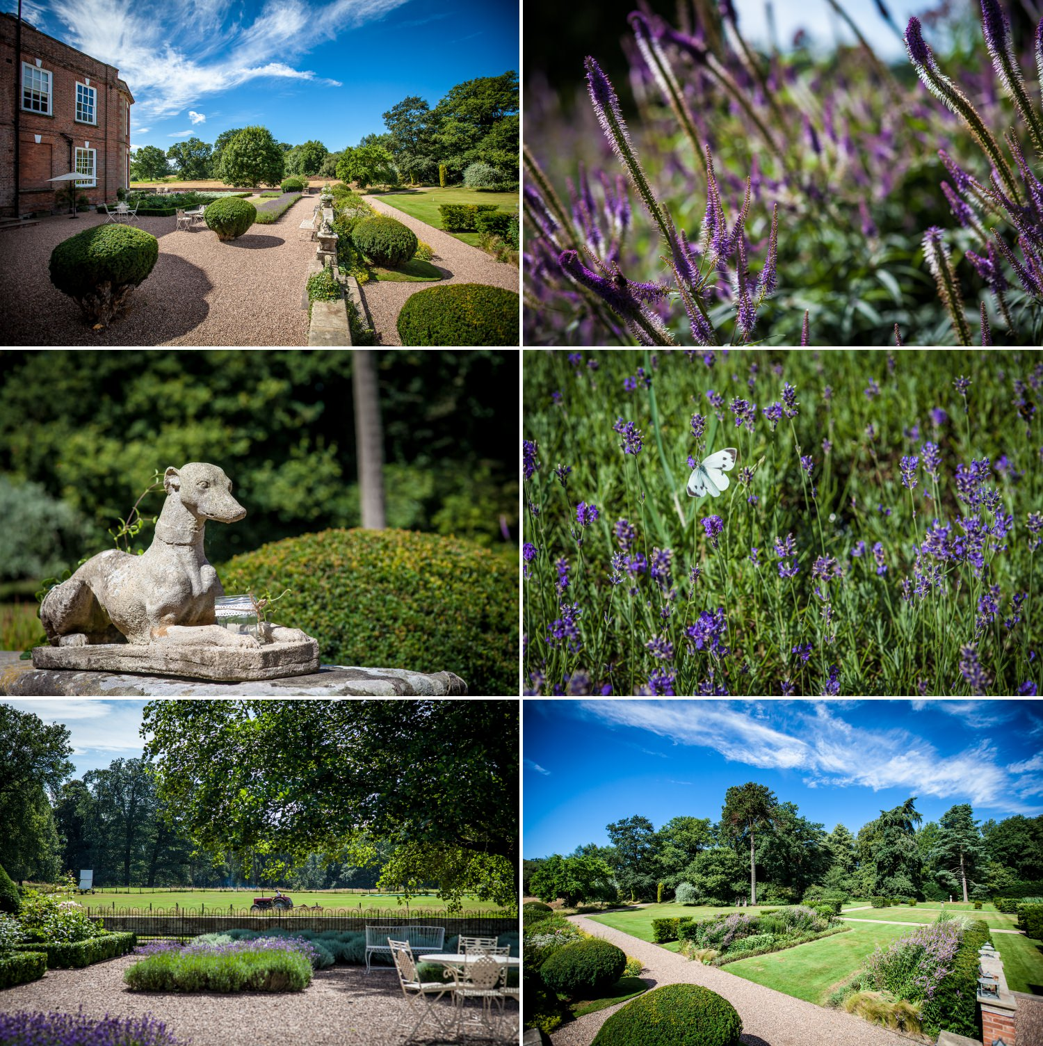 Wedding Photography of grounds at Iscoyd Park