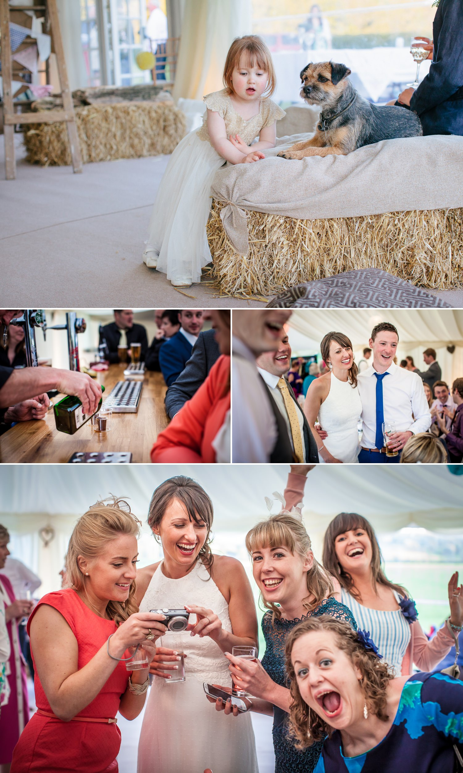 wedding photography of guests mingling north wales